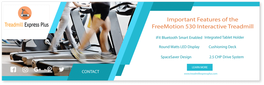 FreeMotion 530 Treadmill